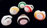 Dyed Shell Rings