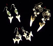 Shark Tooth Earrings III